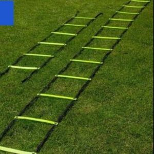 Workout ladder